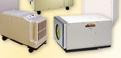 Basement and Crawl Space Dehumidification Services